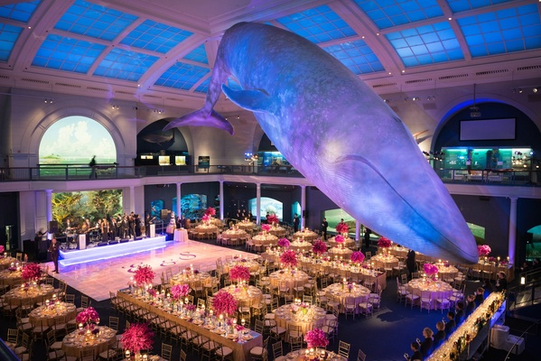 Wedding reception with a purple palatte at the American Museum of Natural History