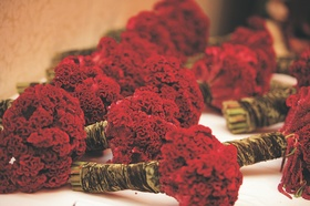 Bridesmaids bouquets of red flowers wrapped in gold crushed velvet