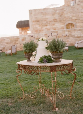 Iron table with three layer cake and herb plants