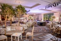 wedding reception ballroom lounge area settee armchair live trees inside ballroom purple lighting