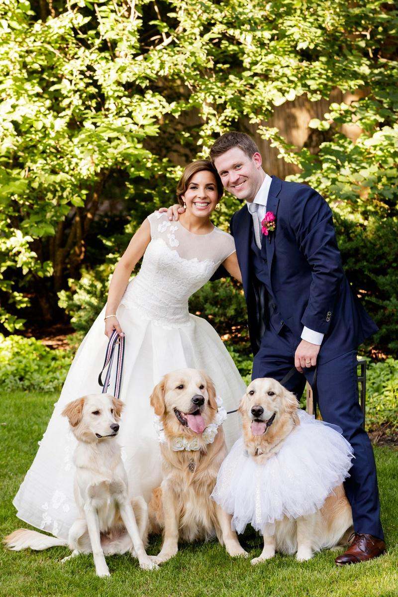 Bride In A Line Wedding Dress Groom Navy Suit Golden Retriever Dog Flower Girls Ring: Wedding Ring Barrier Dogs At Websimilar.org