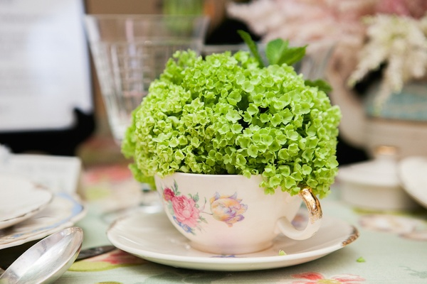 Lime green hydrangea looking flowers in floral china tea cup