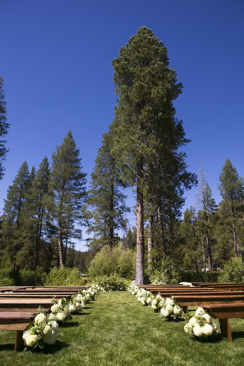 Green grass and trees with wood pews