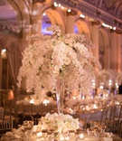 wedding reception rount table tall centerpiece orchid rose hydrangea flowers gold rim glassware