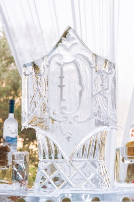 Monogram ice sculpture and vodka martini luge