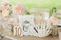 Antique white frame with coral and wooden table number