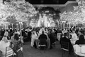 wedding at filoli, black and white wedding photo, twinkle lights on trees, bistro lights