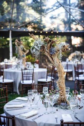 branch centerpieces with blue succulents, moss,