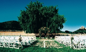 Lindsay Price and Shawn Piller's outdoor wedding