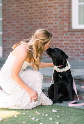 bride in zuhair murad kisses flower girl dog black lab
