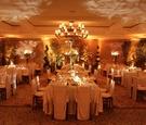 Luxury ballroom wedding reception with topiaries