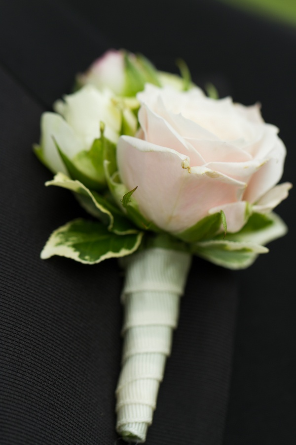 Light pink rose with green leaves boutonniere