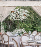 white french upholstered chairs around round and wood tables tall centerpiece drapery clear tent