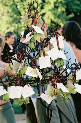 Place cards on green orchids tied to small tree