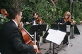 Enchanted Evening Chamber Ensemble playing string music at outdoor wedding ceremony