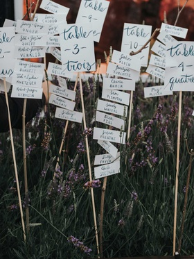wedding reception lavender sticks with hand painted table numbers and escort cards seating charts