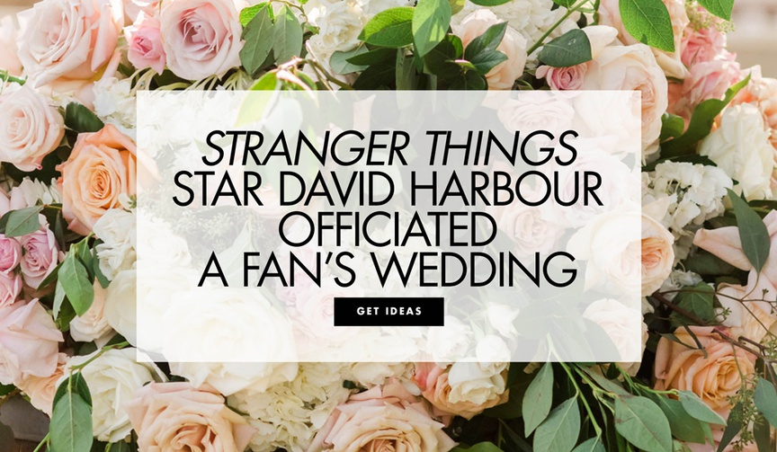 Stranger Things star David Harbour officiated a fan's wedding