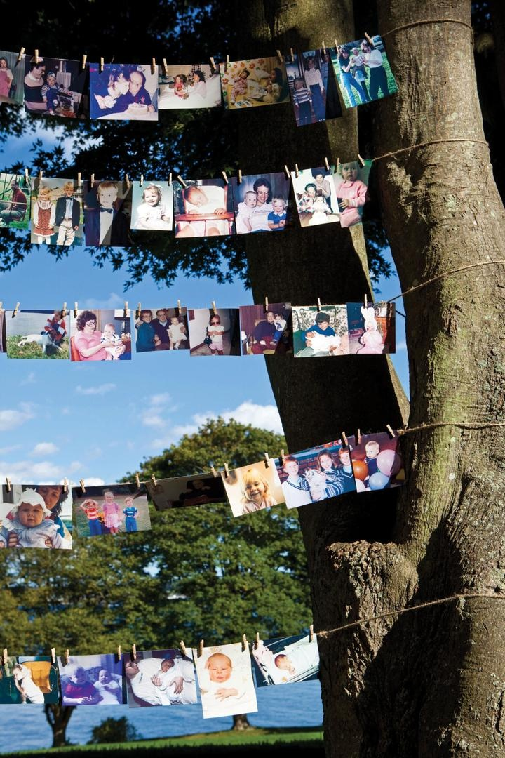 Five rows of photos on clothes lines on tree