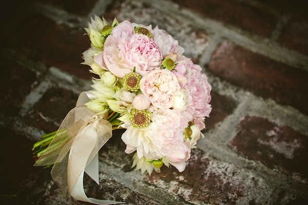 White and pink garden roses wrapped in sheer ribbon