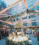 wedding cocktail hour string musicians quartet on white stage greenery flowers chandelier open tent