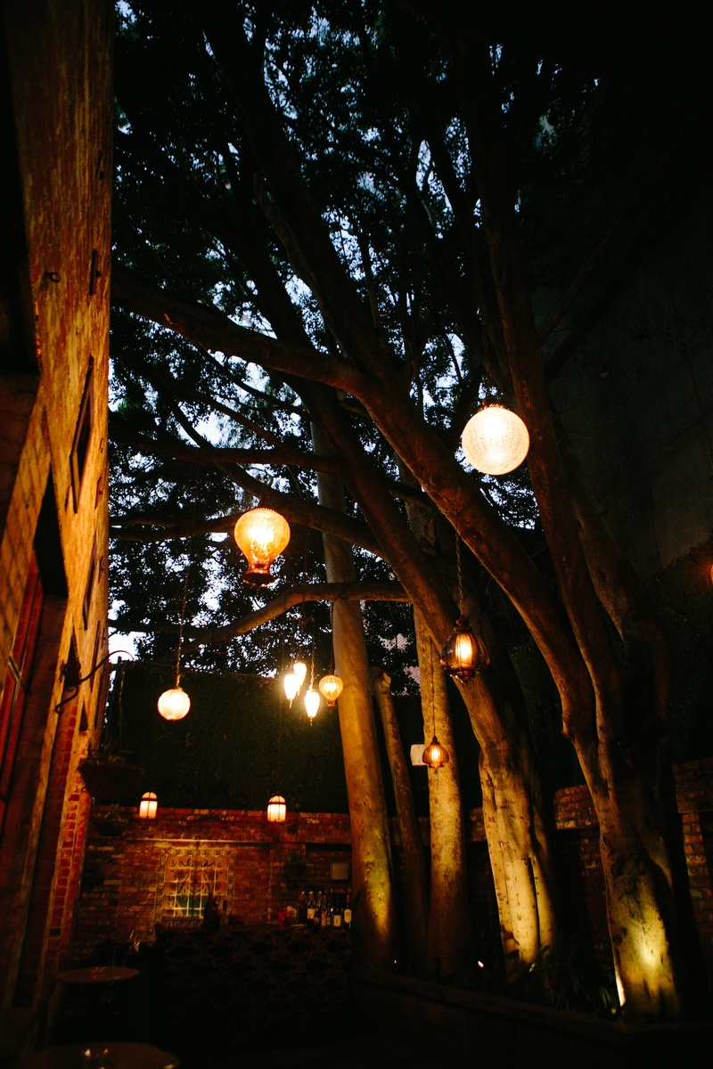 Moroccan lantern and orb lanterns hanging from tree