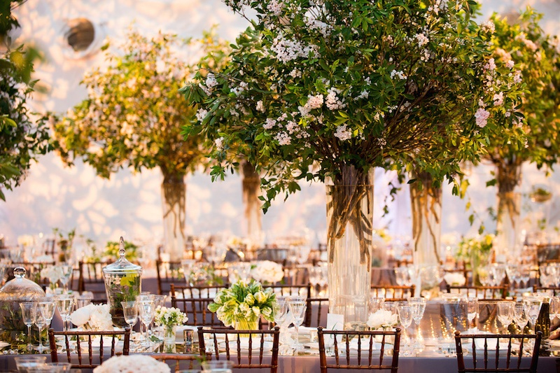 Reception dcor photos greenery tree like wedding centerpieces wedding reception centerpiece with green tree white flower and branches junglespirit Images