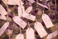 cake pop wedding favors with purple ribbon and thank you for celebrating with us tags