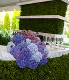 a colorful arrangement of blue and purple hydrangeas on bar with white and blue counter and greenery
