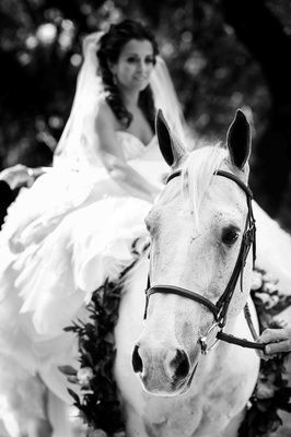 Black and white photo of bride on horseback