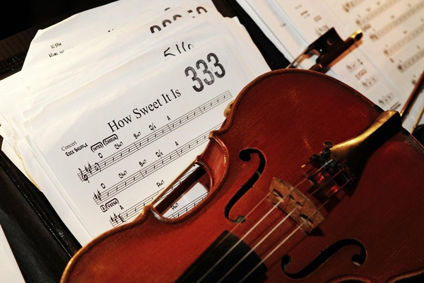 Wedding orchestra musical instrument and notes