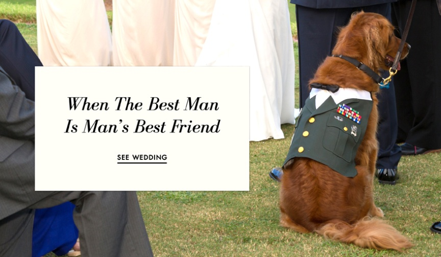 Groom chooses golden retriever as best man at wedding
