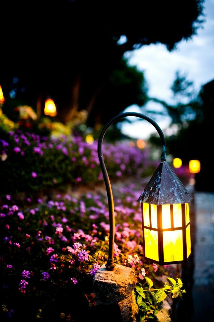 Bright lantern next to purple flowers and stone walk path