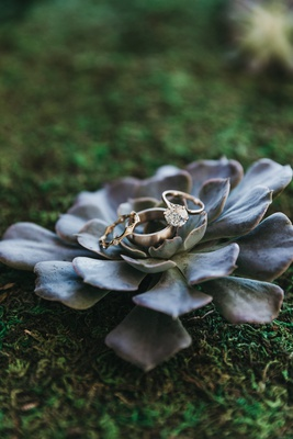 old european cut diamond engagement ring placed on blue succulent with wedding bands