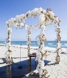 Wedding canopy constructed of driftwood and orchids