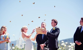 Bride and groom holding box of monarch butterflies