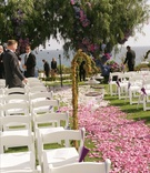 Oceanfront ceremony on grassy lawn with ombre flower petal aisleway