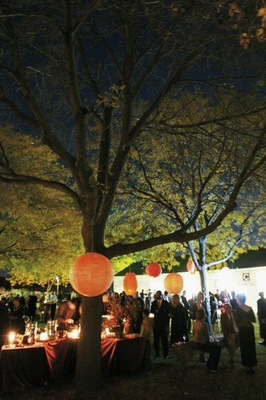 Evening cocktail hour under trees with orange paper lanterns