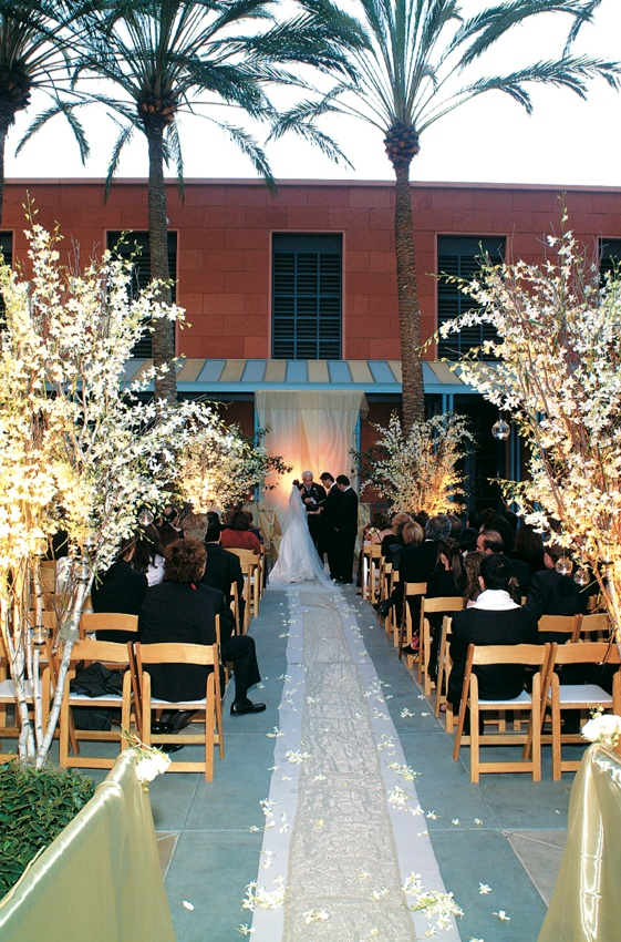 Aisle runner lined with wooden chairs