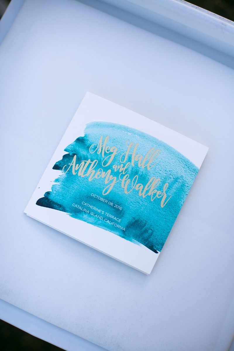 blue and white programs with calligraphy font