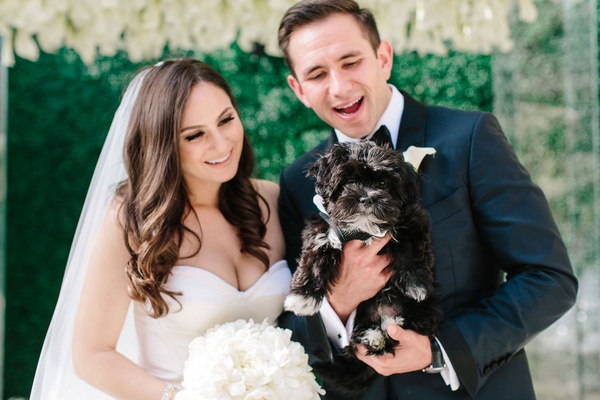 Bride and groom looking at little black dog looking lovingly at their pup wedding day