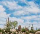 Four Seasons Resort Scottsdale at Troon North landscape shot