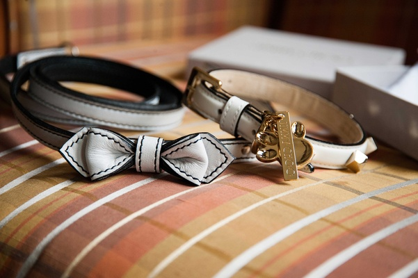 dog accessories for the wedding collars with leather bows