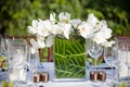 Small centerpiece with white orchid and zebra leaves