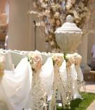 Reggie Arvizu and Dena Beber's alfresco wedding