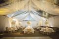 Tented wedding reception with white draping, floral arrangements, linens, gold chairs