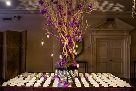 An enchanted escort card table includes deep purple blooms amid branches and hanging light.
