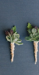 Groomsmen boutonniere with succulents and burlap