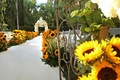 White aisle and chairs lined with sunflowers