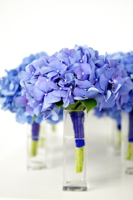 Nosegays of blue hydrangea flowers in glass vases