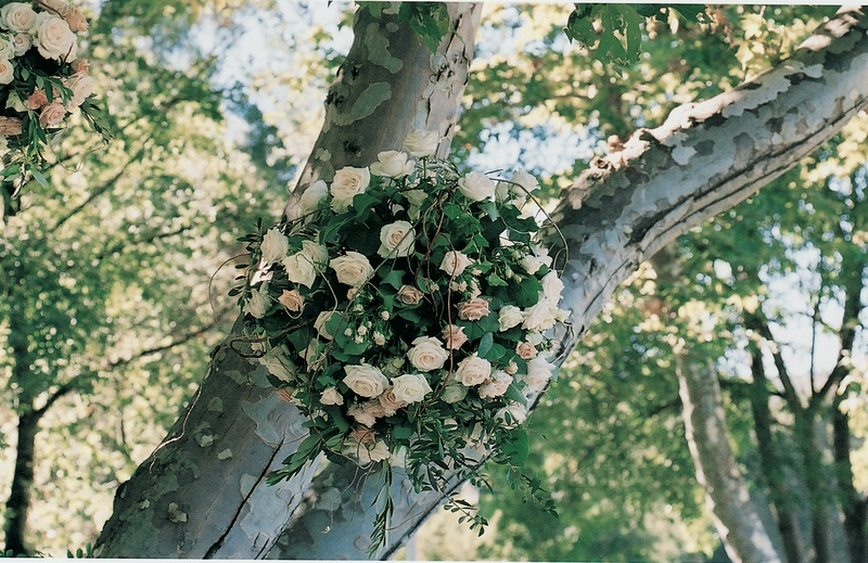 Ball of flowers and verdure hanging from tree